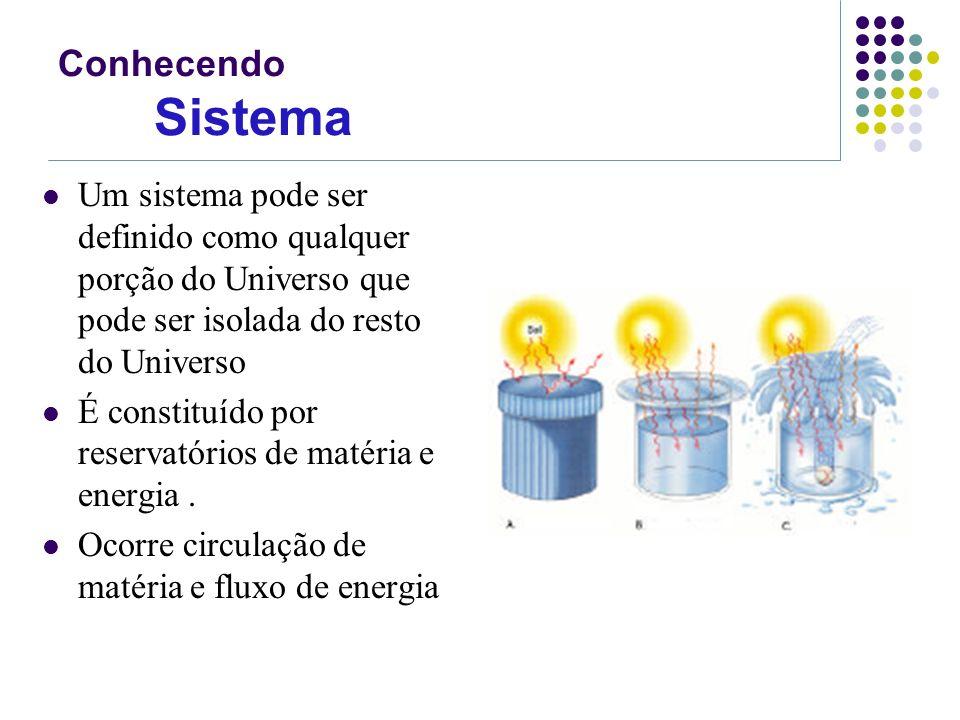 Conhecendo Sistema Um sistema pode ser definido como qualquer porção do Universo que pode ser isolada do resto do Universo.