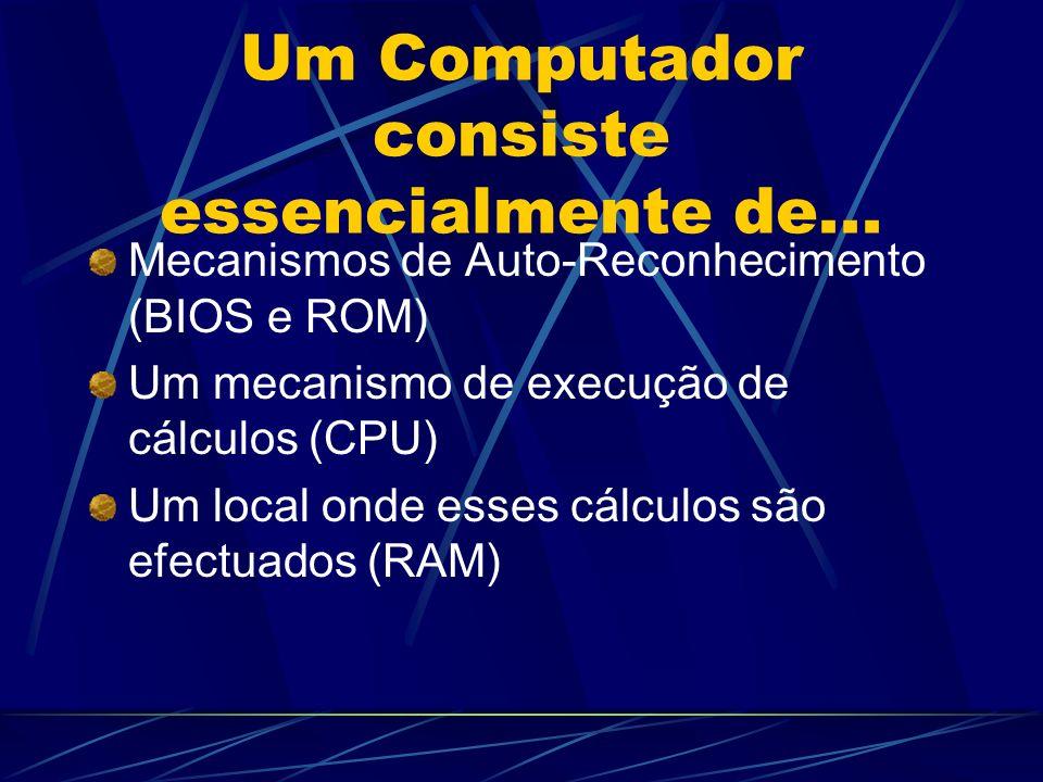 Um Computador consiste essencialmente de...