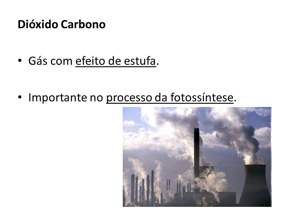 Dióxido Carbono Gás com efeito de estufa. Importante no processo da fotossíntese.