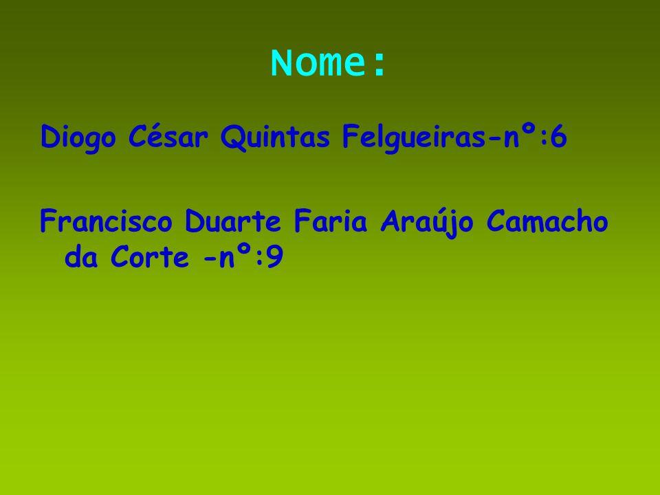 Nome: Diogo César Quintas Felgueiras-nº:6