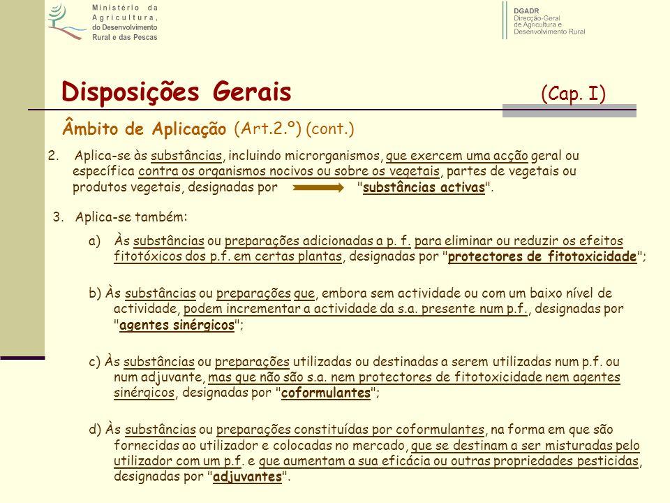 Disposições Gerais (Cap. I)
