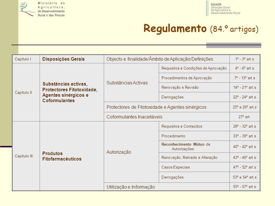 Regulamento (84.º artigos)