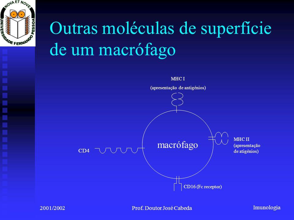 Outras moléculas de superfície de um macrófago