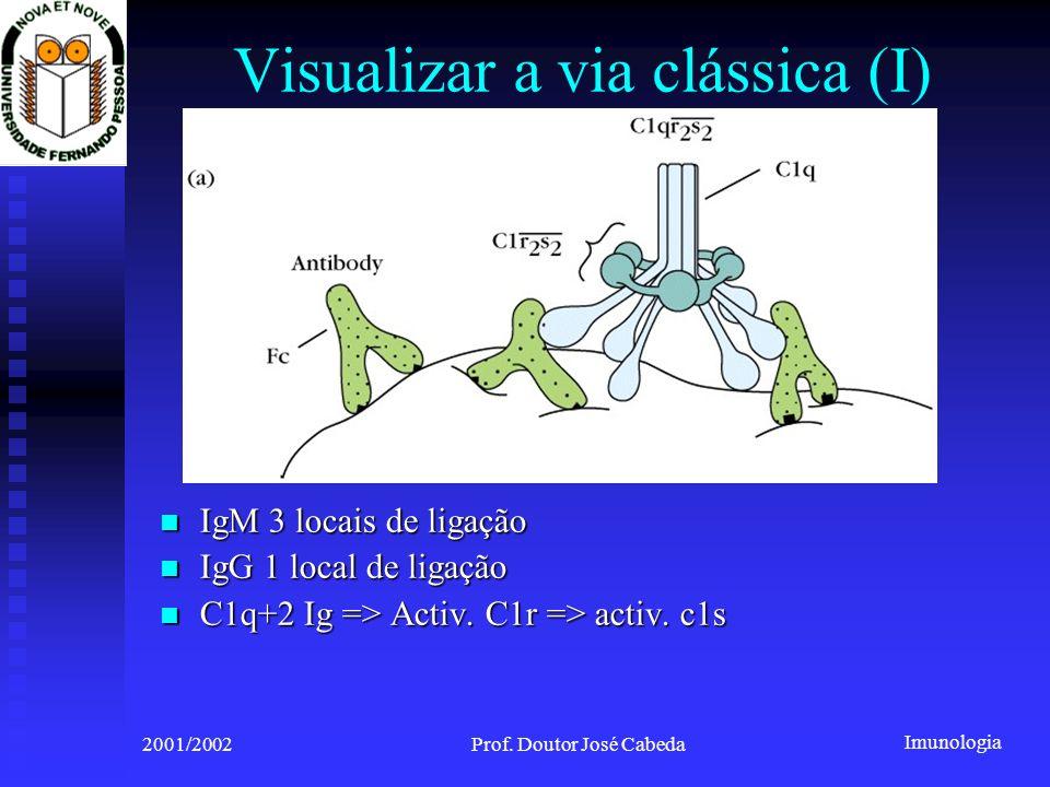 Visualizar a via clássica (I)