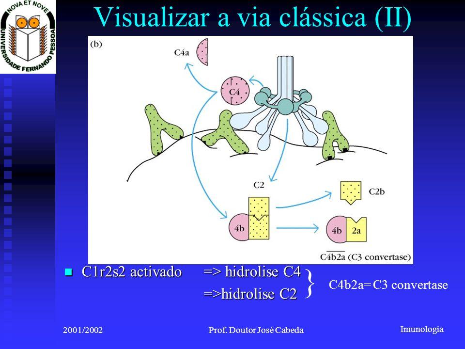 Visualizar a via clássica (II)