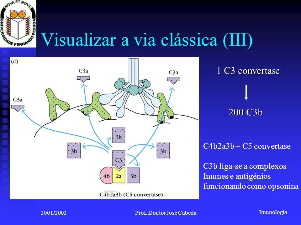 Visualizar a via clássica (III)