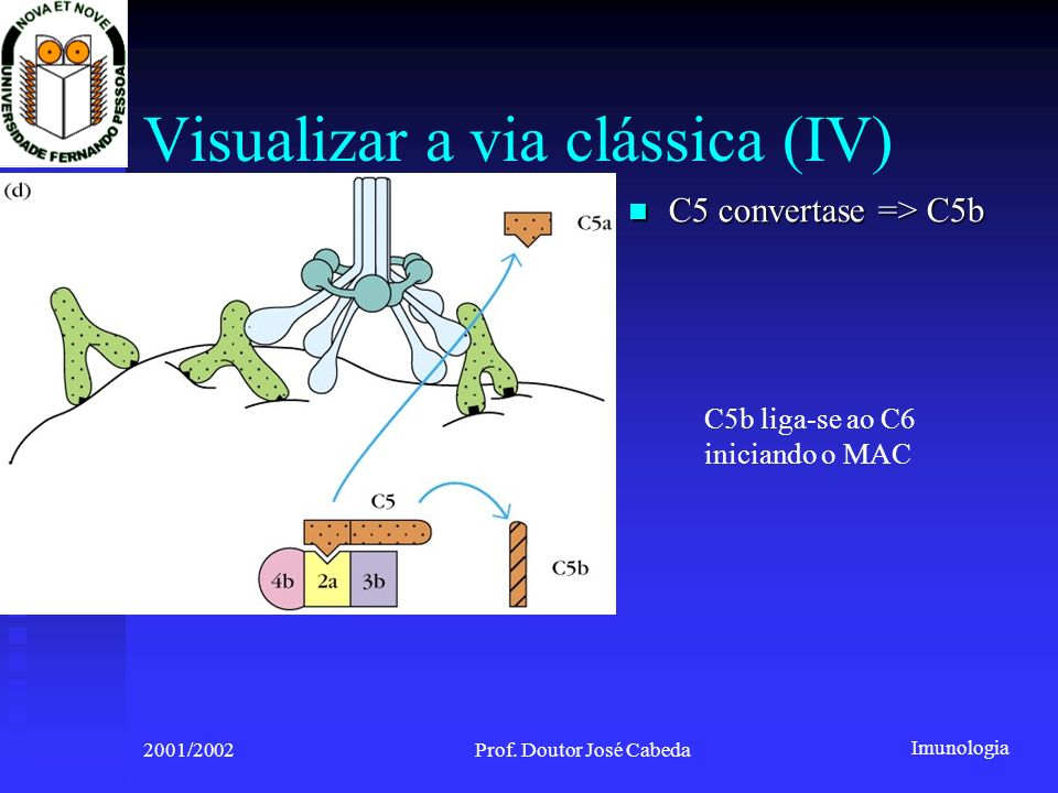 Visualizar a via clássica (IV)