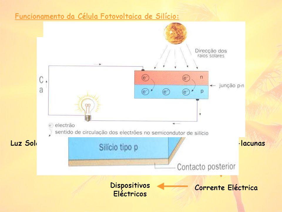 Célula Fotovoltaica (peça do tipo n) Dispositivos Eléctricos
