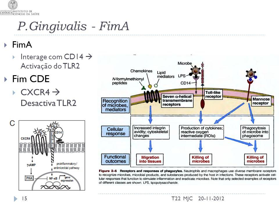 P.Gingivalis - FimA Fim CDE FimA CXCR4  Desactiva TLR2