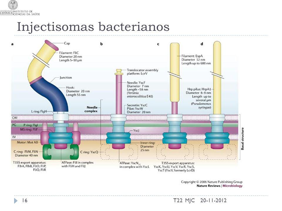 Injectisomas bacterianos