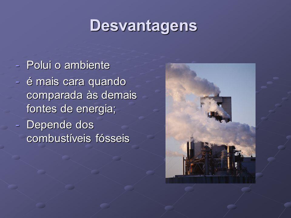 Desvantagens Polui o ambiente