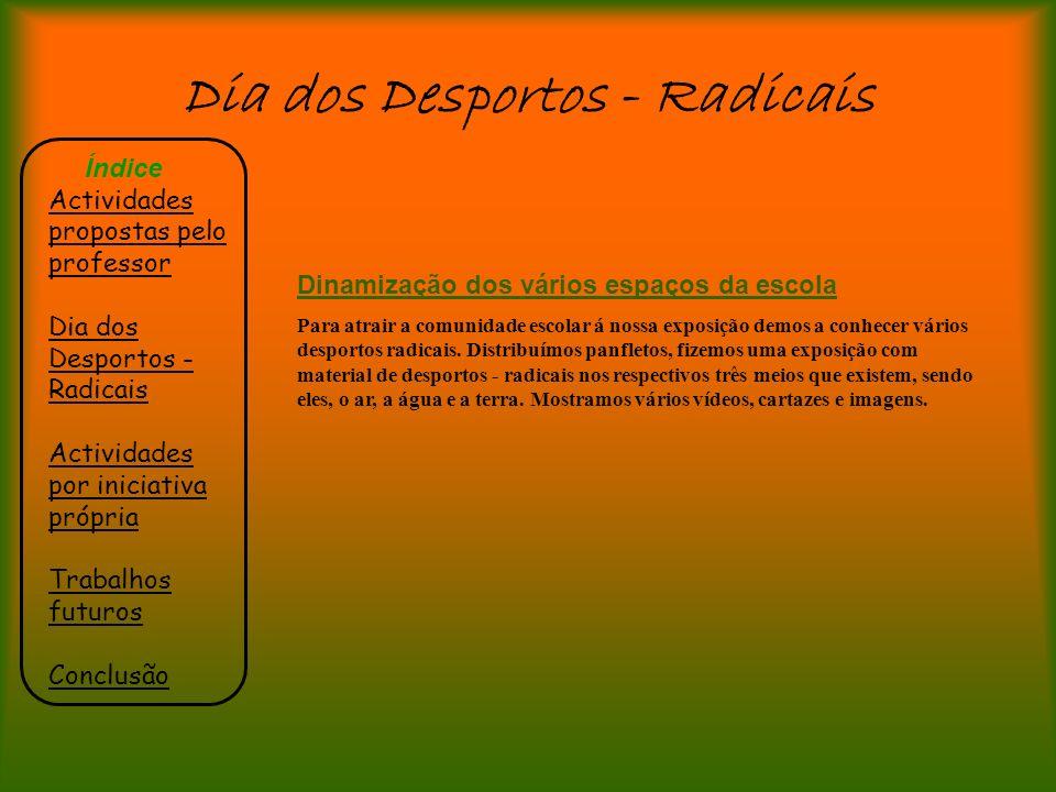 Dia dos Desportos - Radicais