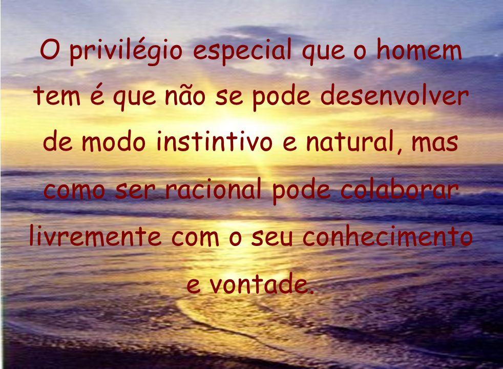 O privilégio especial que o homem tem é que não se pode desenvolver de modo instintivo e natural, mas como ser racional pode colaborar livremente com o seu conhecimento e vontade.