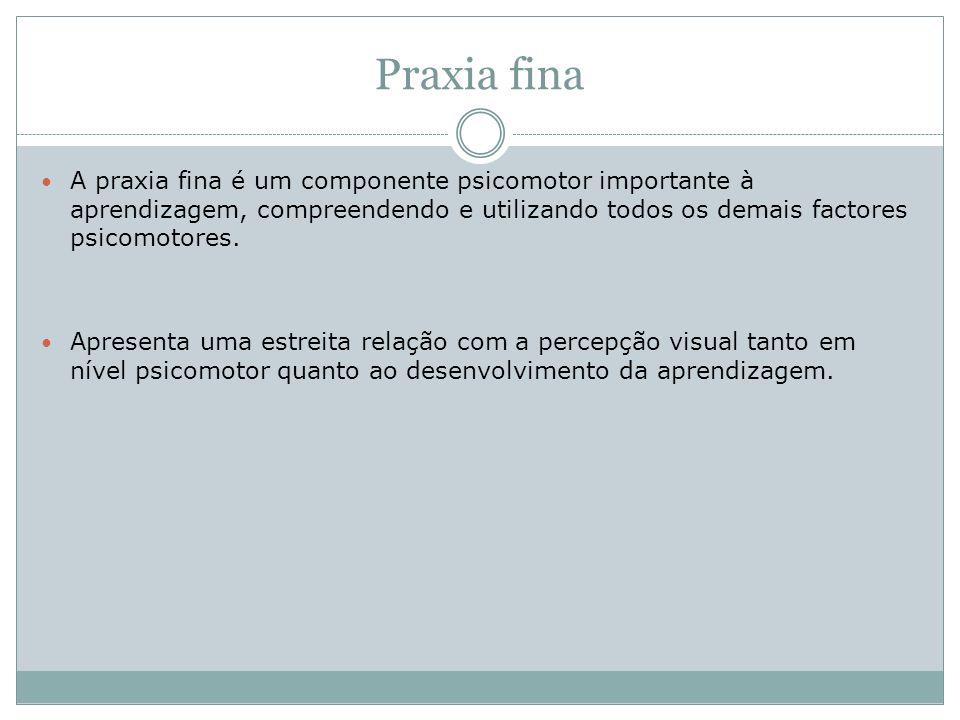 Praxia finaA praxia fina é um componente psicomotor importante à aprendizagem, compreendendo e utilizando todos os demais factores psicomotores.