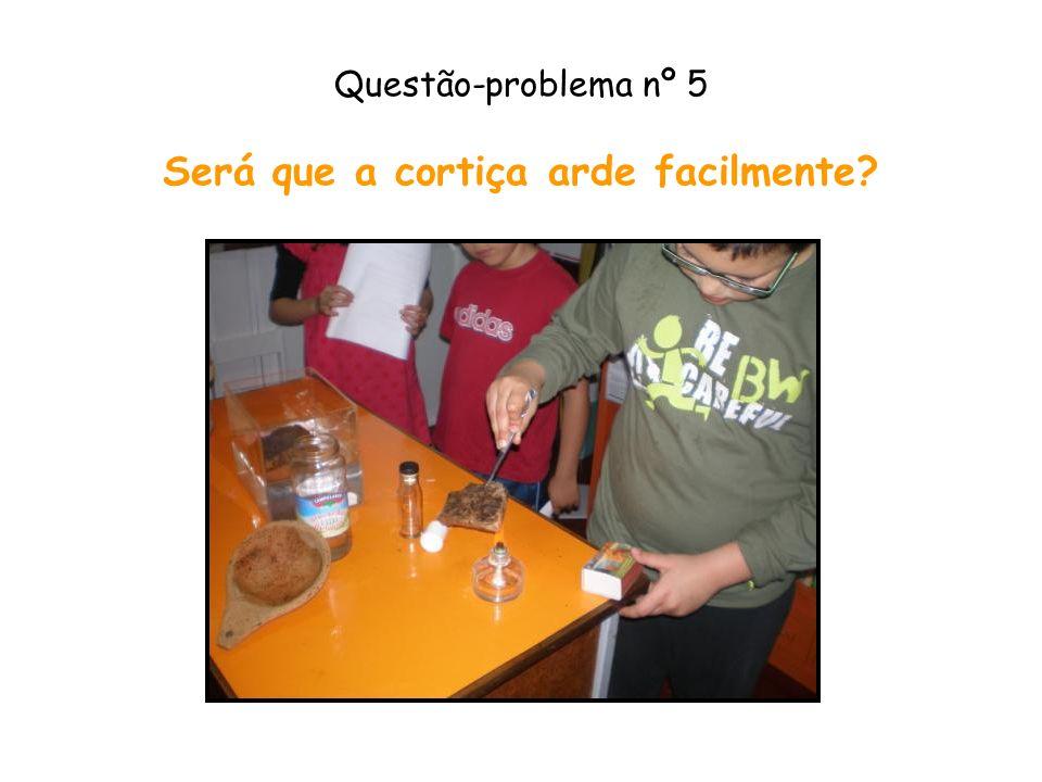 Questão-problema nº 5 Será que a cortiça arde facilmente
