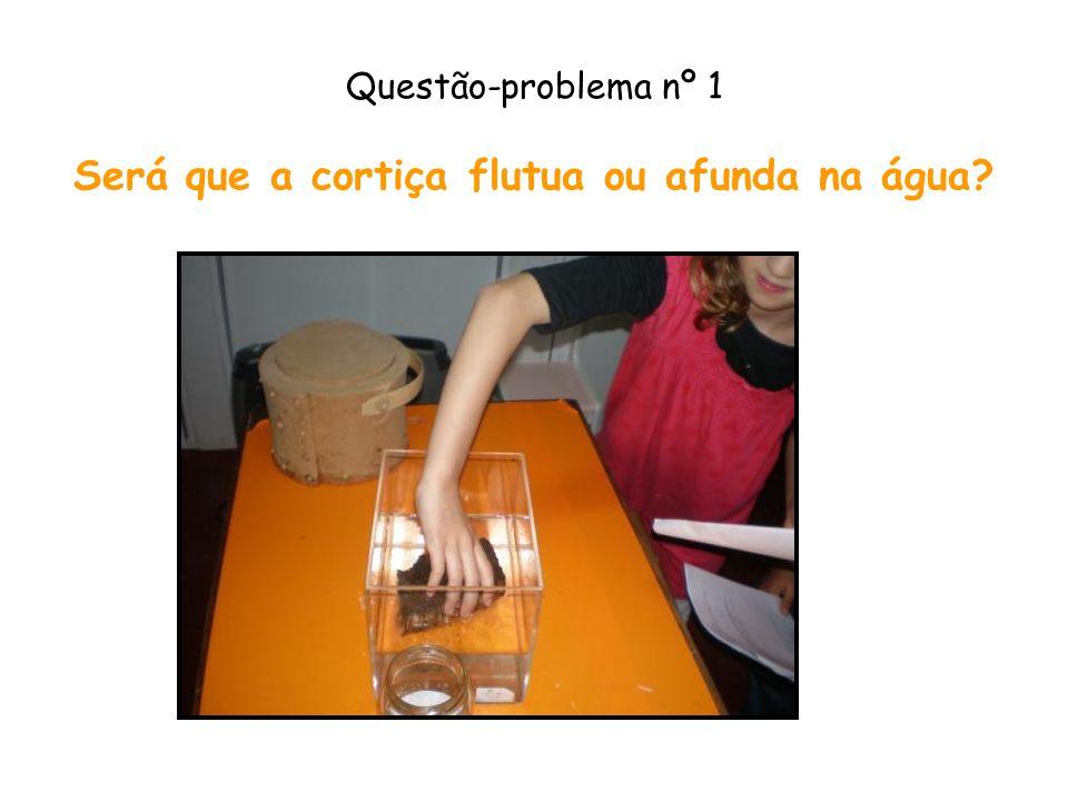 Questão-problema nº 1 Será que a cortiça flutua ou afunda na água