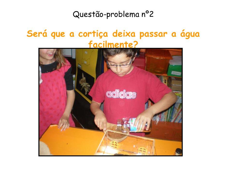 Questão-problema nº2 Será que a cortiça deixa passar a água facilmente