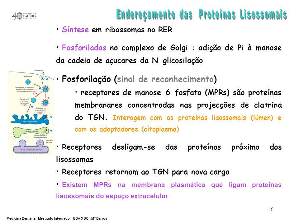 Endereçamento das Proteínas Lisossomais