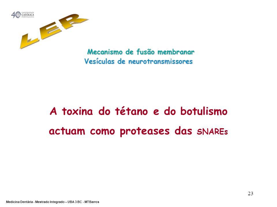 LER Mecanismo de fusão membranar