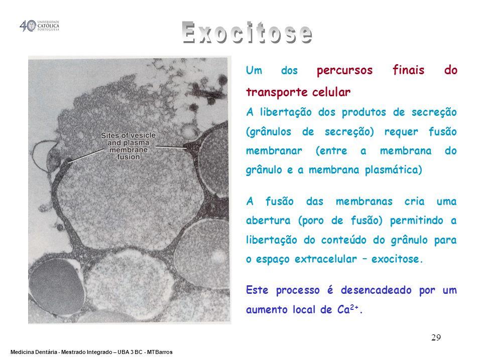 Exocitose Um dos percursos finais do transporte celular
