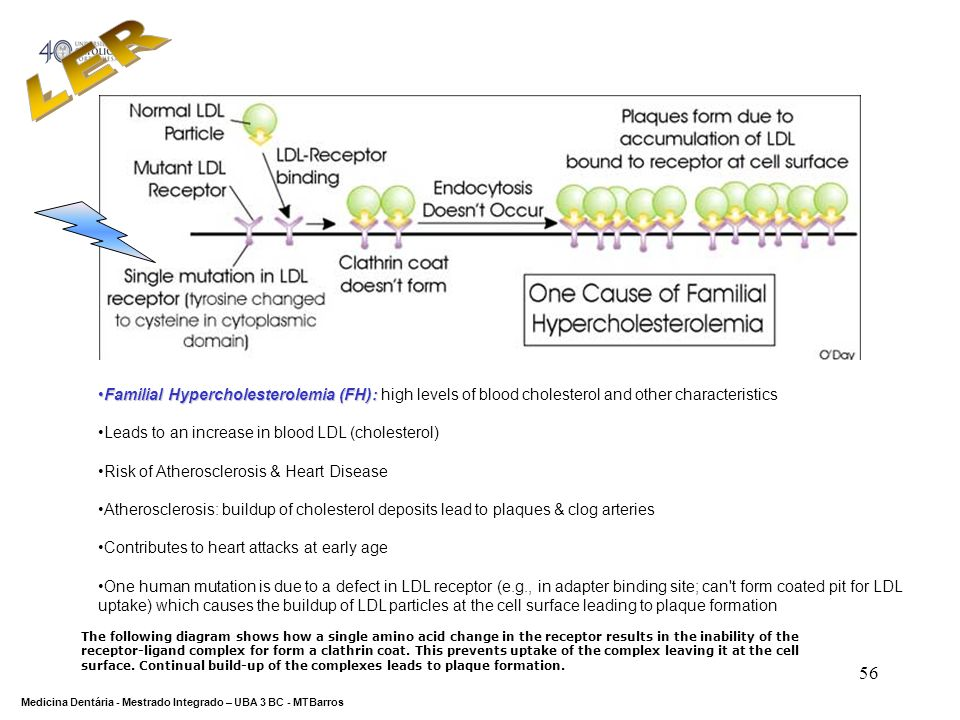 LERFamilial Hypercholesterolemia (FH): high levels of blood cholesterol and other characteristics. Leads to an increase in blood LDL (cholesterol)