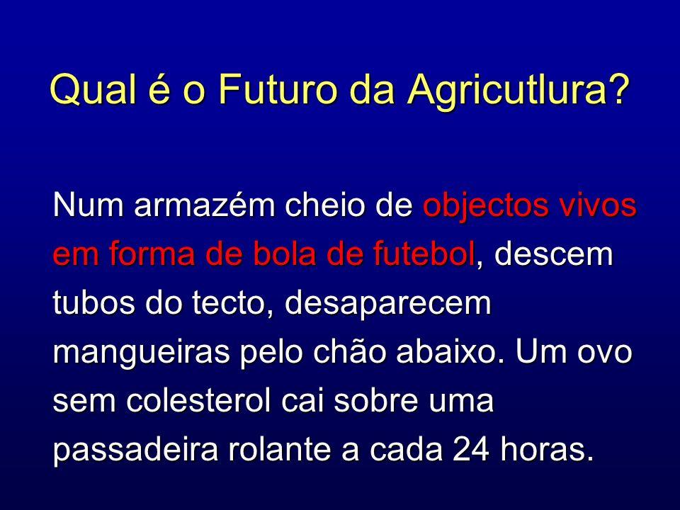 Qual é o Futuro da Agricutlura