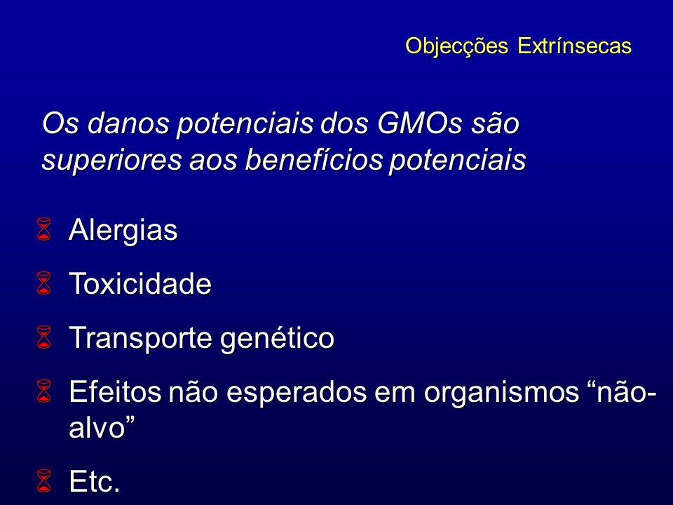 Os danos potenciais dos GMOs são superiores aos benefícios potenciais