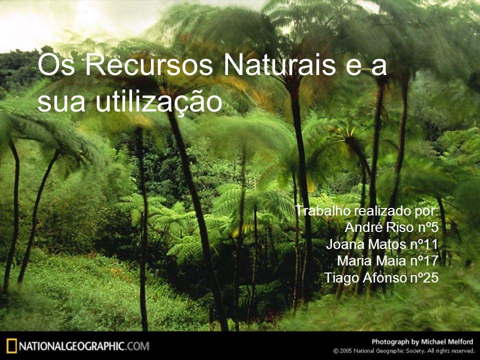 Os Recursos Naturais e a sua utilização