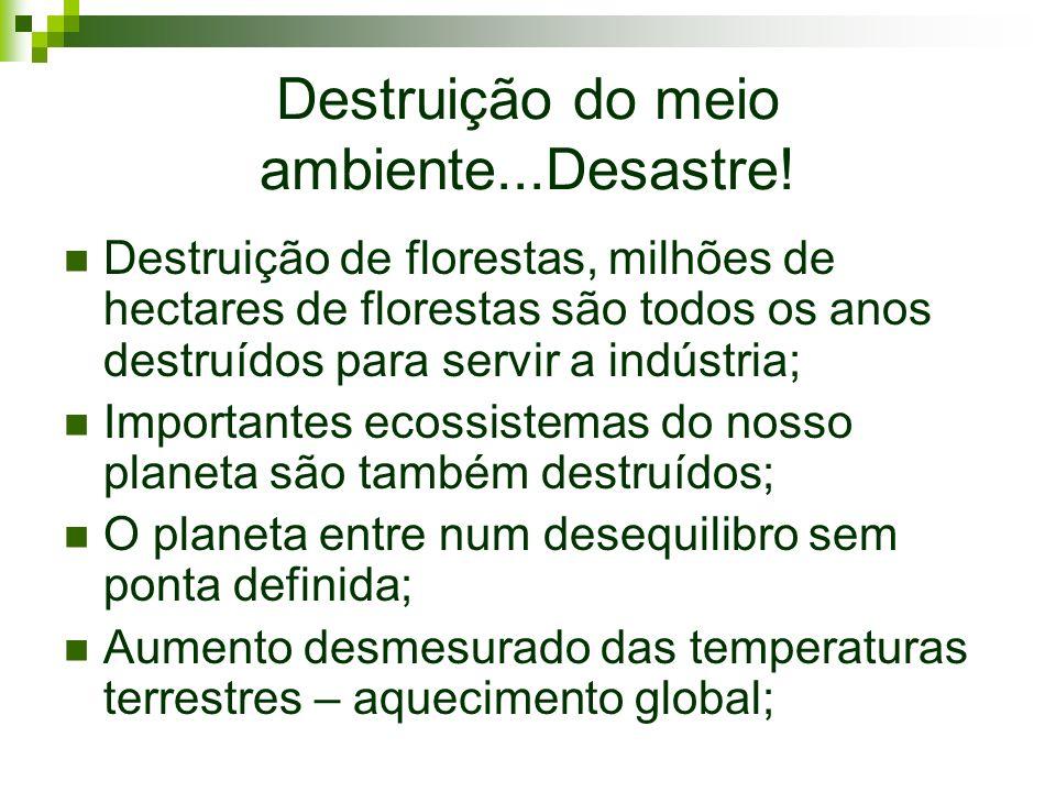 Destruição do meio ambiente...Desastre!