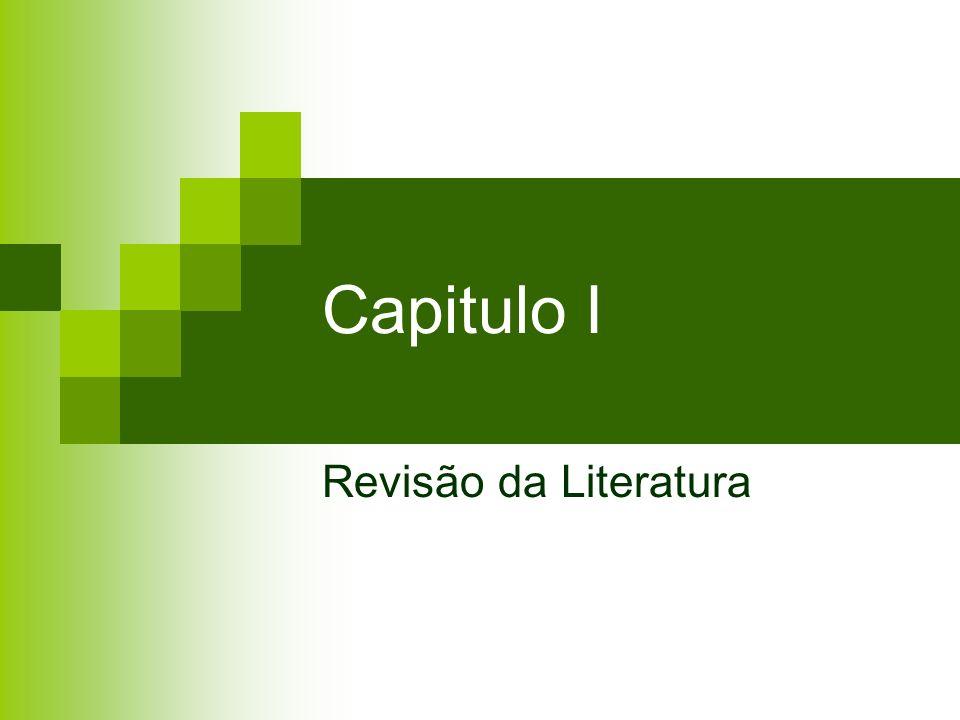 Capitulo I Revisão da Literatura