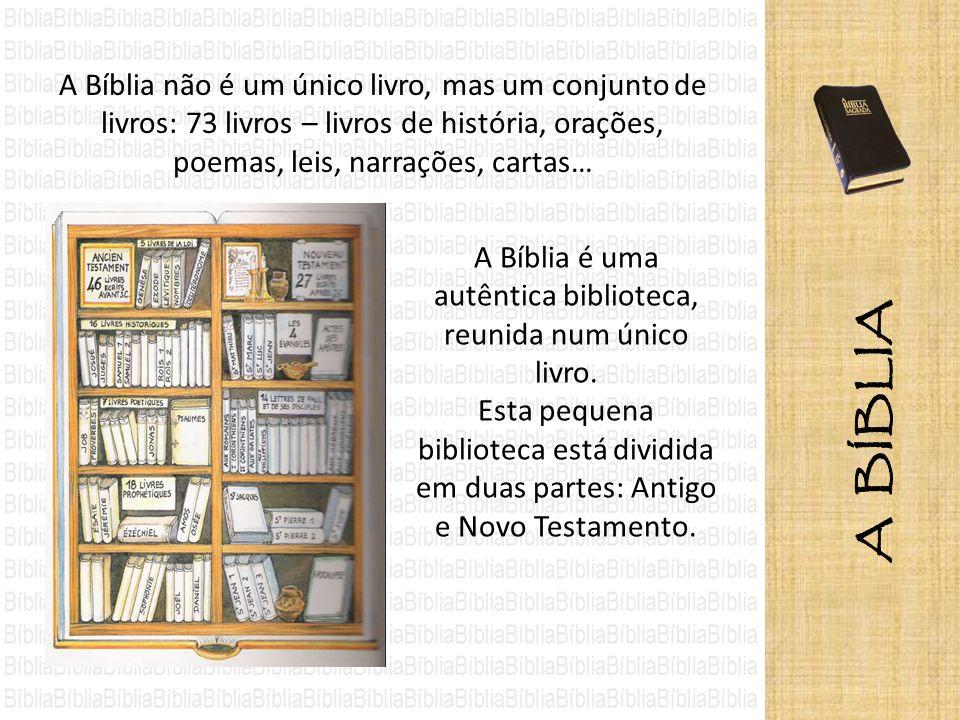 A Bíblia é uma autêntica biblioteca, reunida num único livro.