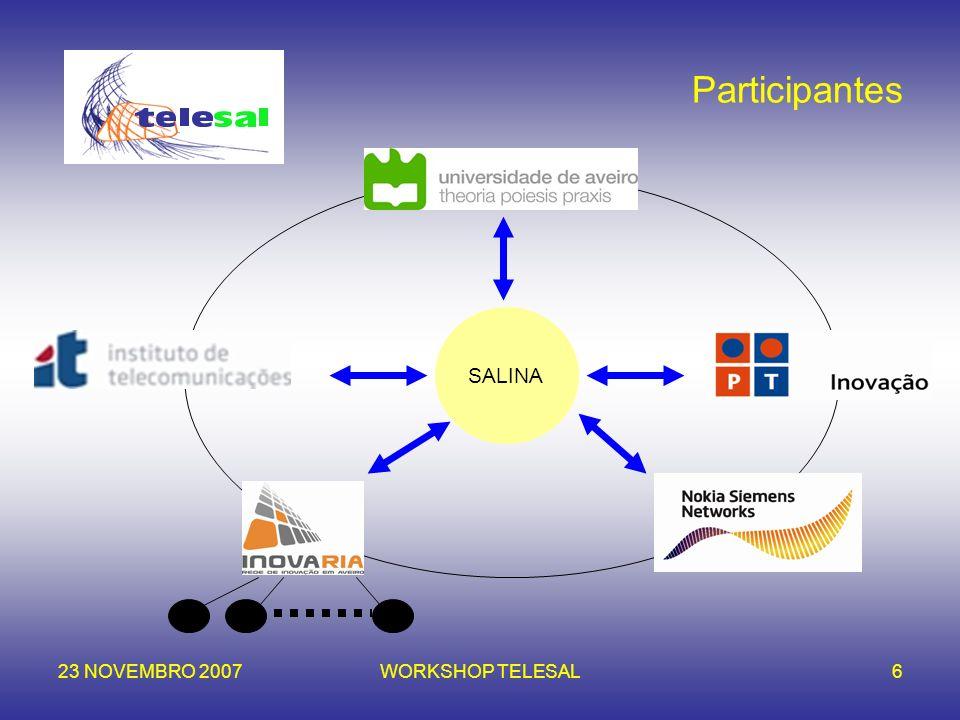 Participantes SALINA 23 NOVEMBRO 2007 WORKSHOP TELESAL