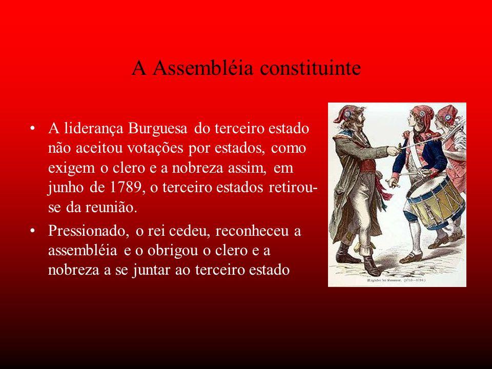 A Assembléia constituinte