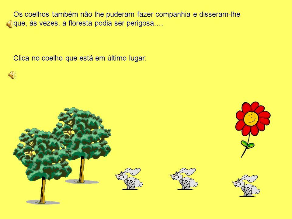 Os coelhos também não lhe puderam fazer companhia e disseram-lhe que, ás vezes, a floresta podia ser perigosa….