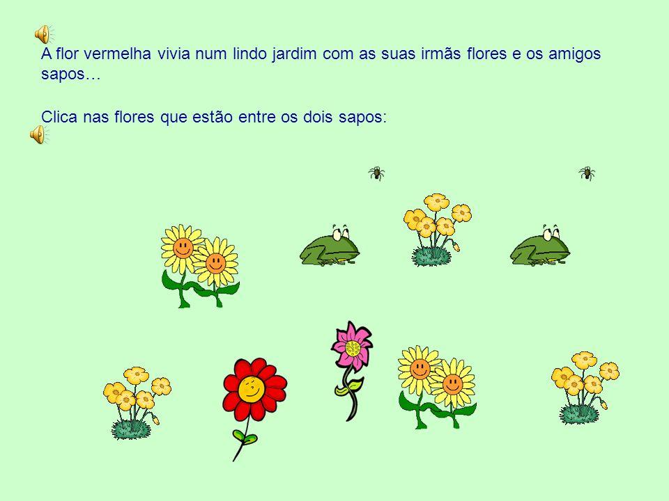 A flor vermelha vivia num lindo jardim com as suas irmãs flores e os amigos sapos…