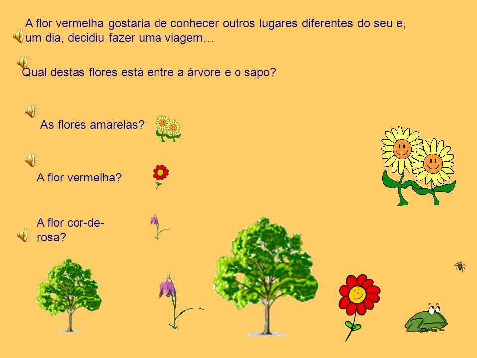 A flor vermelha gostaria de conhecer outros lugares diferentes do seu e, um dia, decidiu fazer uma viagem…