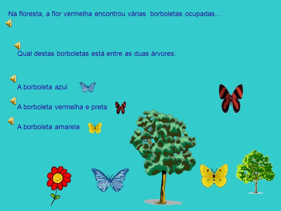 Na floresta, a flor vermelha encontrou várias borboletas ocupadas…