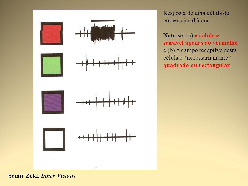 Resposta de uma célula do córtex visual à cor.