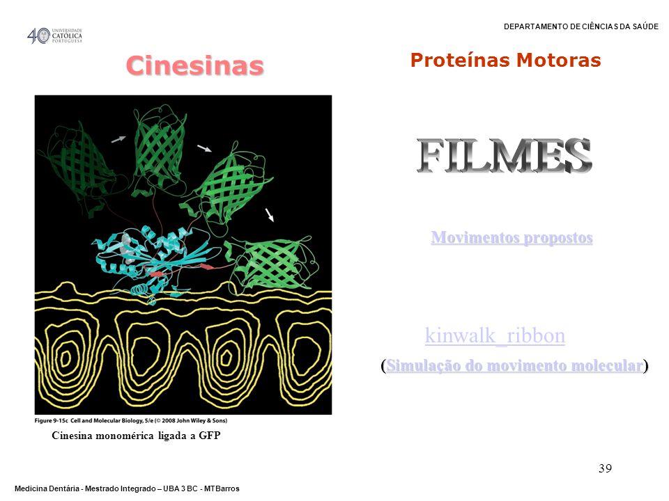 FILMES Cinesinas kinwalk_ribbon Proteínas Motoras Movimentos propostos