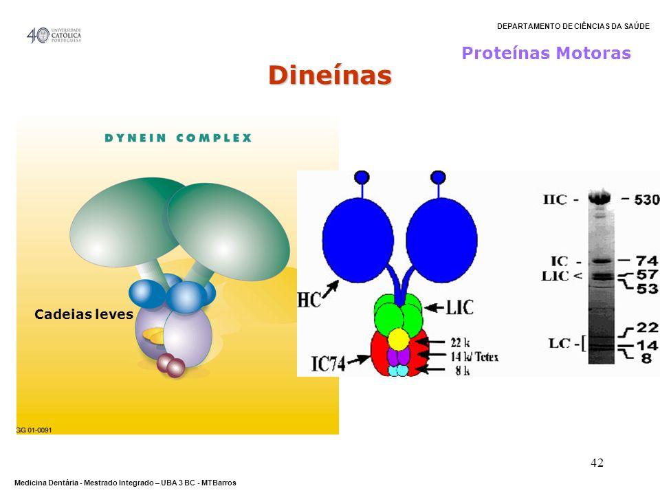 Proteínas Motoras Dineínas Cadeias leves
