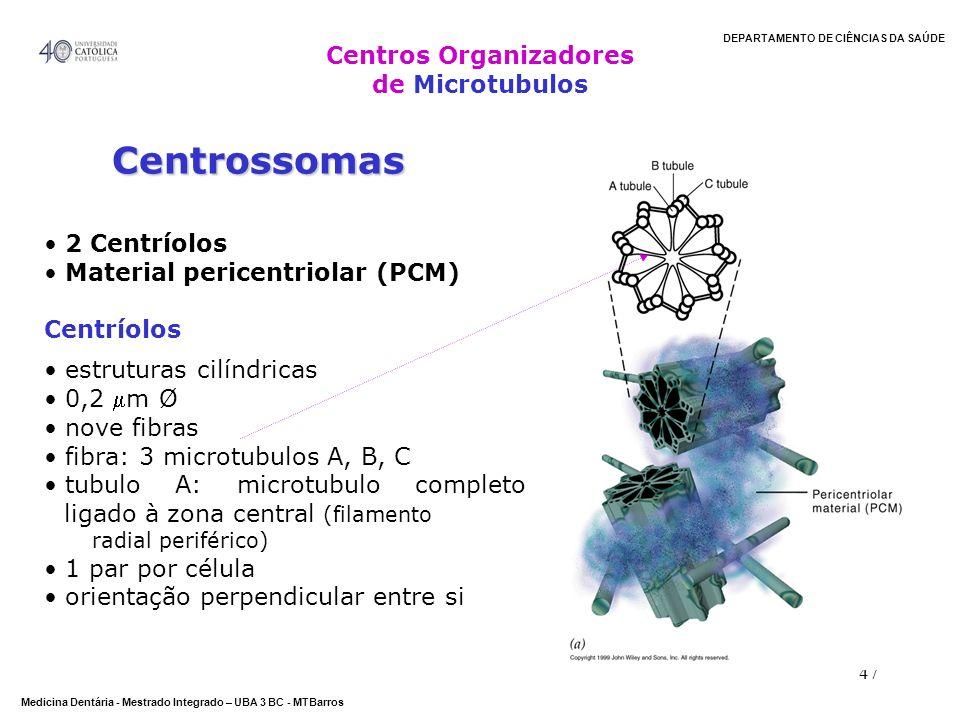 Centros Organizadores