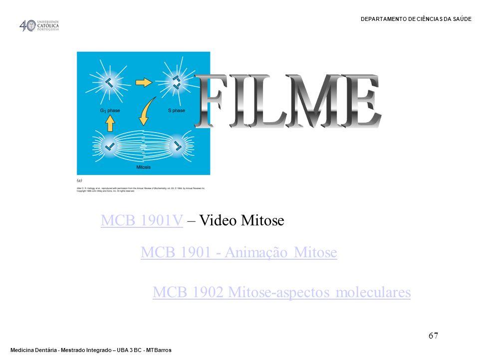 FILME MCB 1901V – Video Mitose MCB 1901 - Animação Mitose