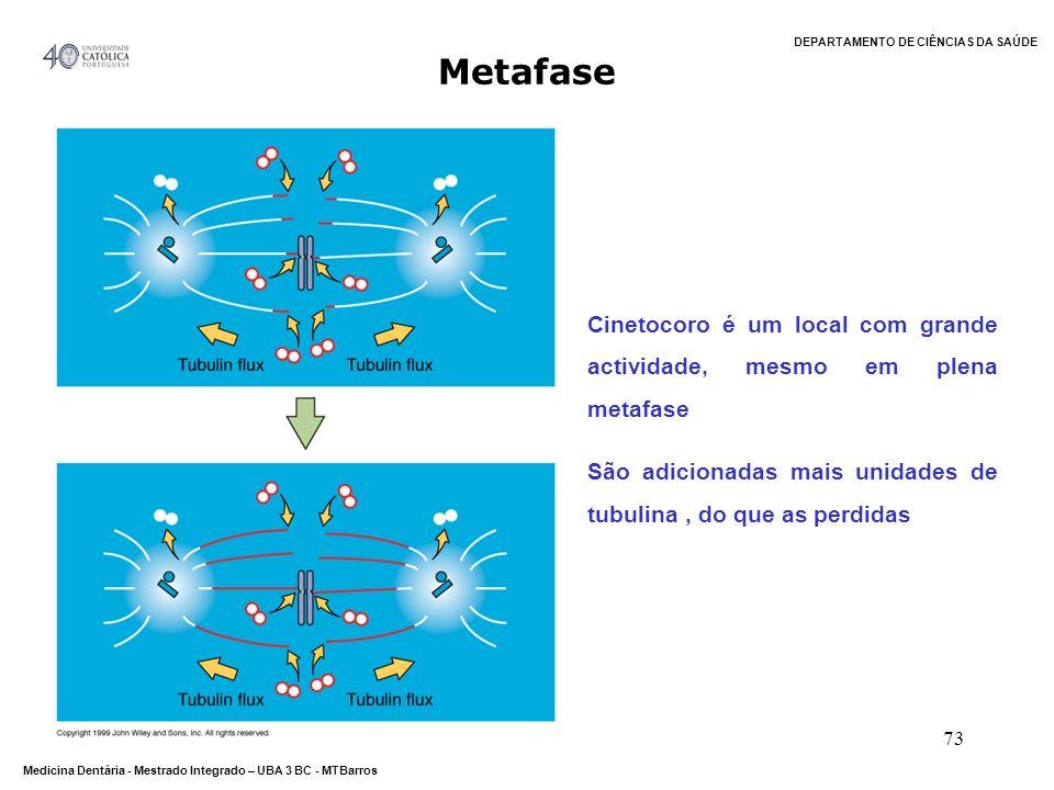 Metafase Cinetocoro é um local com grande actividade, mesmo em plena metafase.