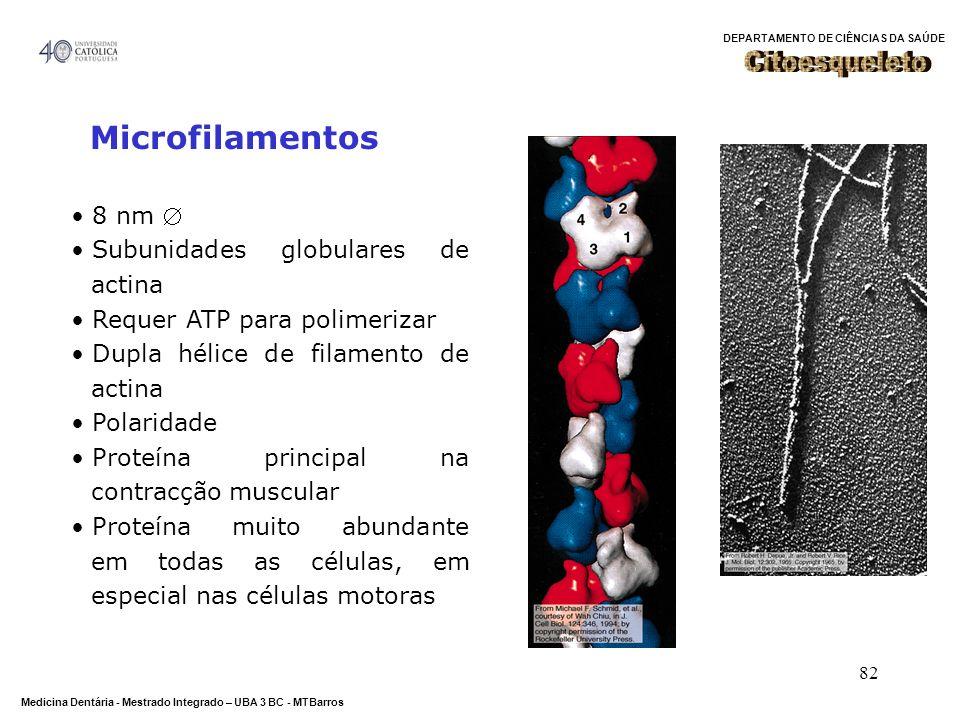 Citoesqueleto Microfilamentos 8 nm  Subunidades globulares de actina