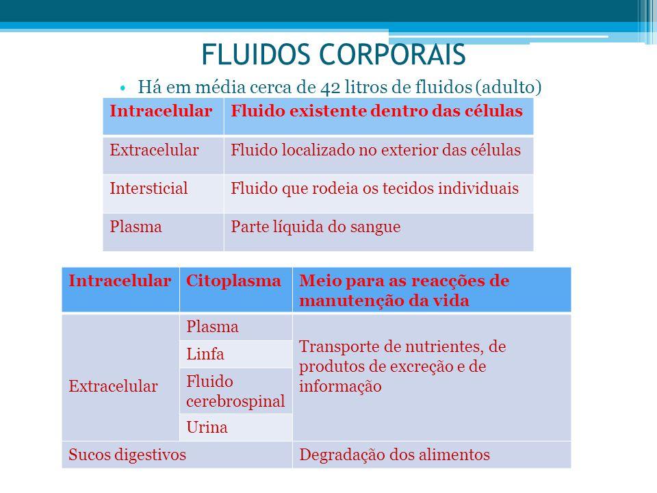 Há em média cerca de 42 litros de fluidos (adulto)