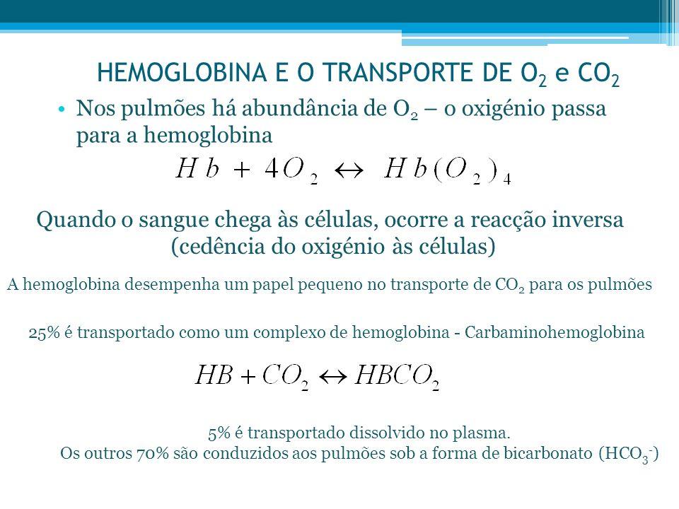HEMOGLOBINA E O TRANSPORTE DE O2 e CO2