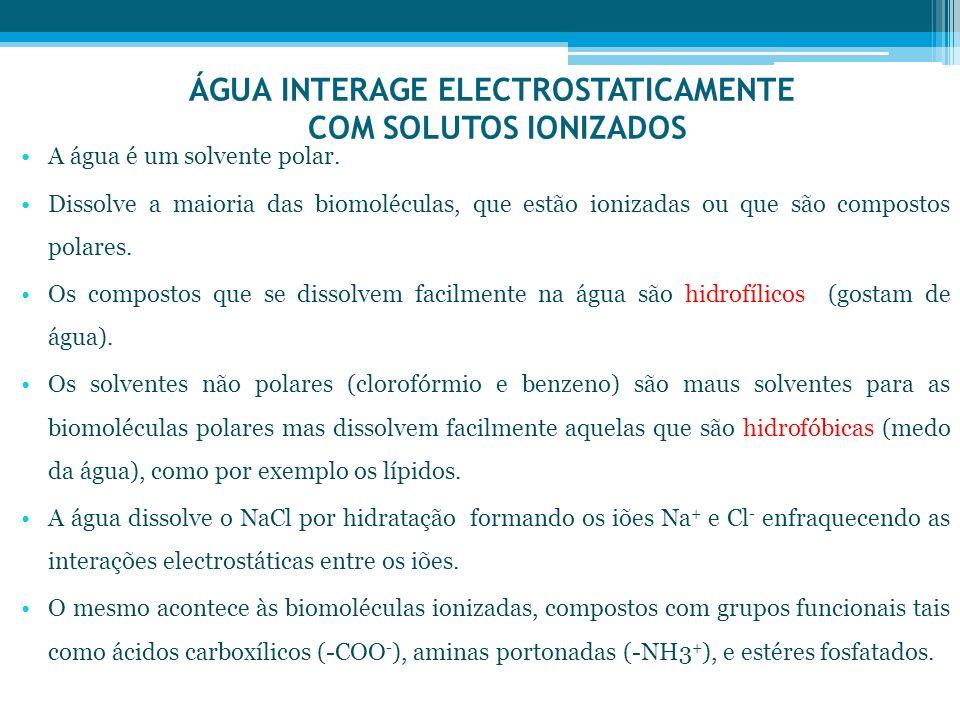 ÁGUA INTERAGE ELECTROSTATICAMENTE COM SOLUTOS IONIZADOS