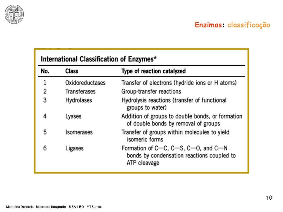 Enzimas: classificação