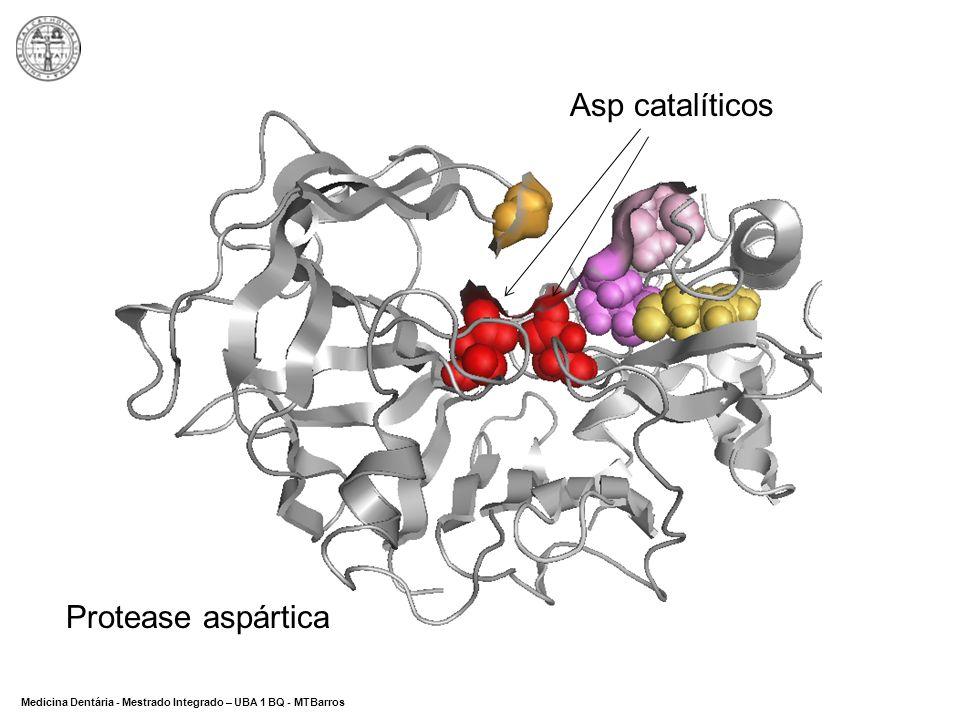 Asp catalíticos Protease aspártica