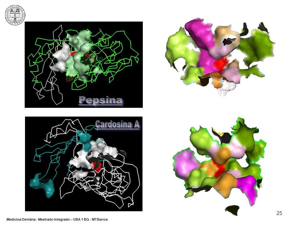 Pepsina Cardosina A